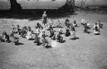 kids squatting in field with teacher